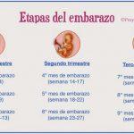 Misterios del embarazo. ¿Cuánto dura?
