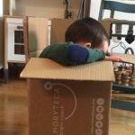 Jugar y jugar: Toolbox Memoryteca Kids