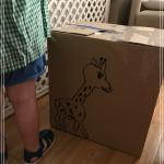 Para una larga tarde en casa, una caja de cartón