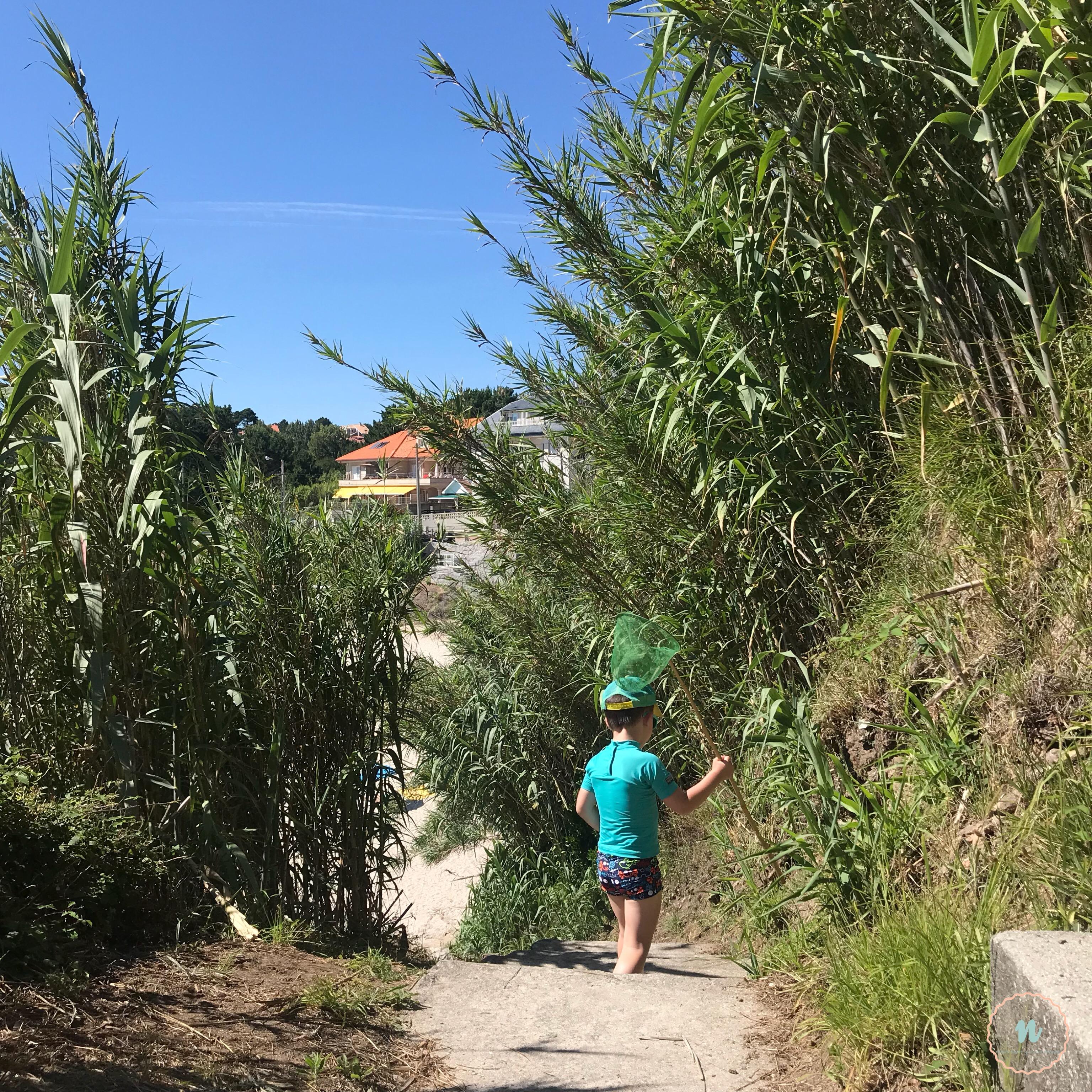 Niño a la playa
