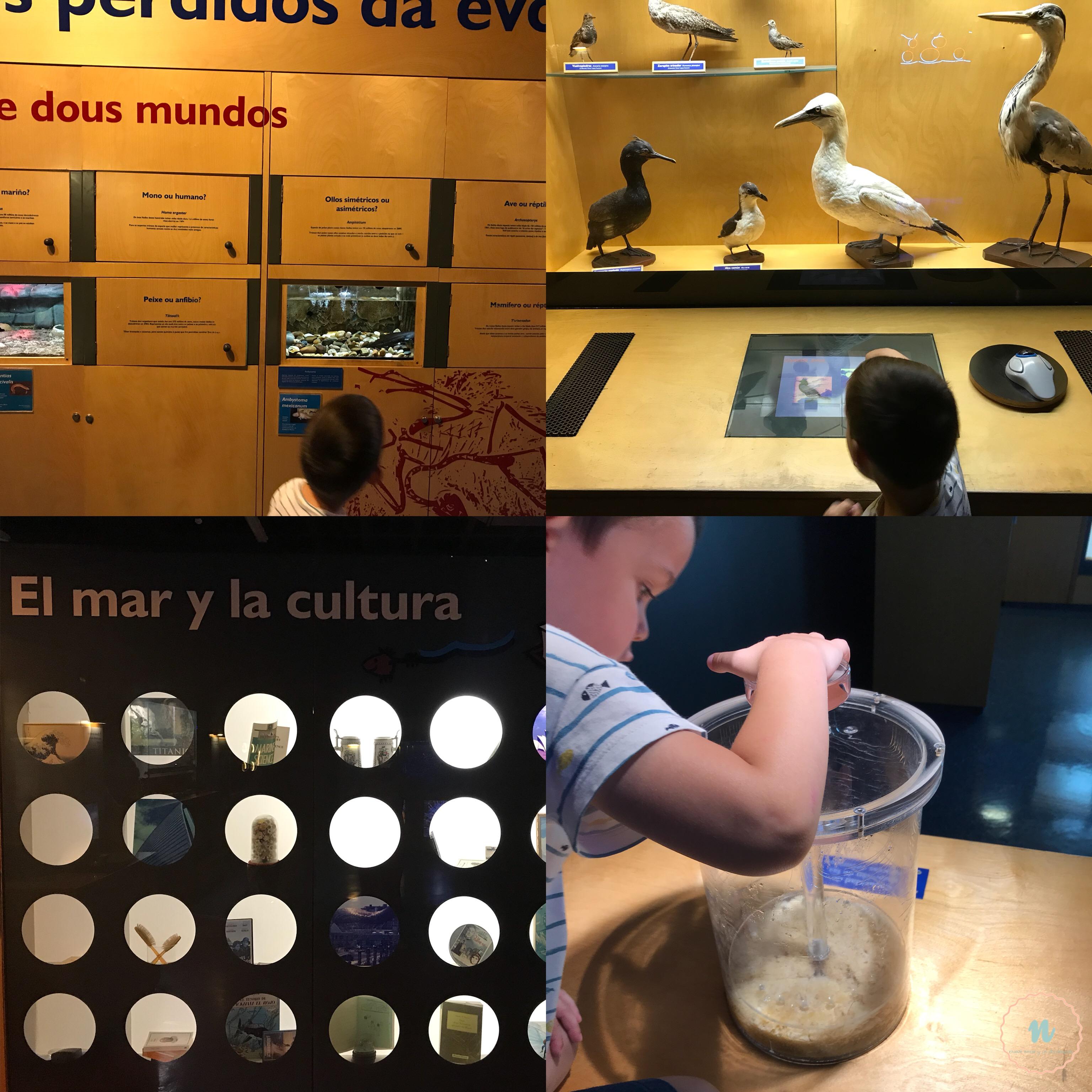 Actividades interactivas acuario La Coruña