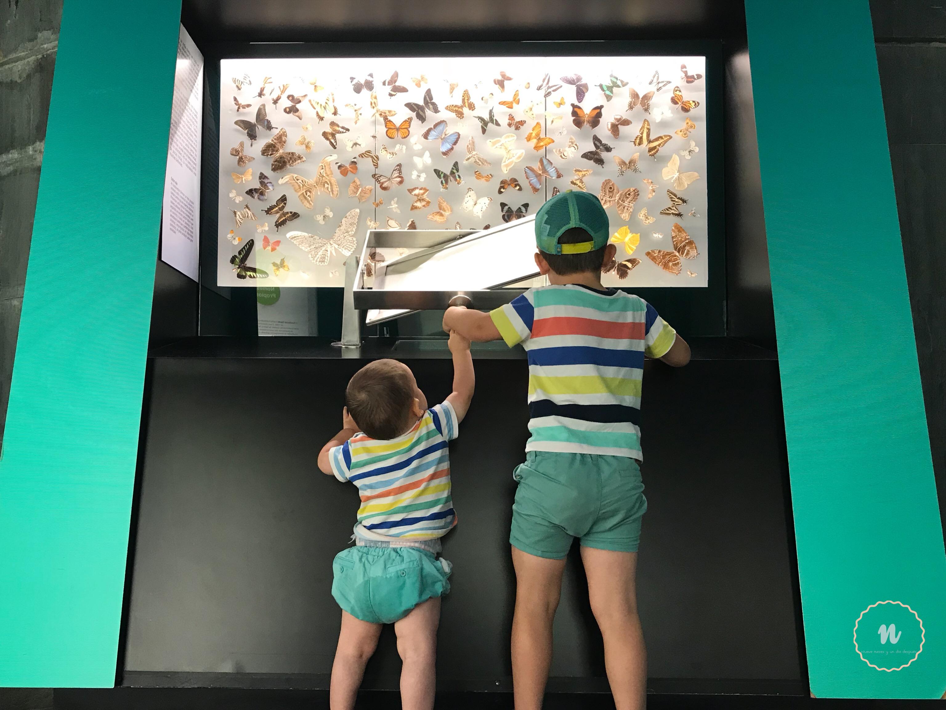 Museo niños La Coruña